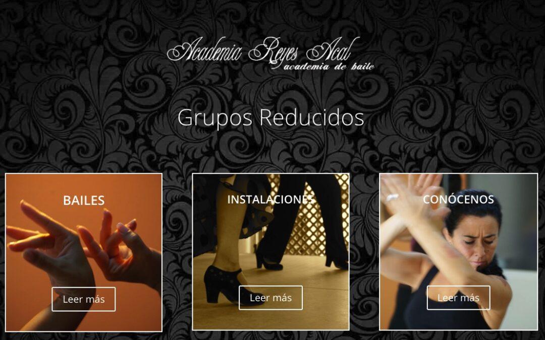Estudio de Baile Flamenco Reyes Acal. Sevilla